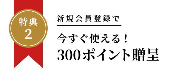 300ポイント贈呈